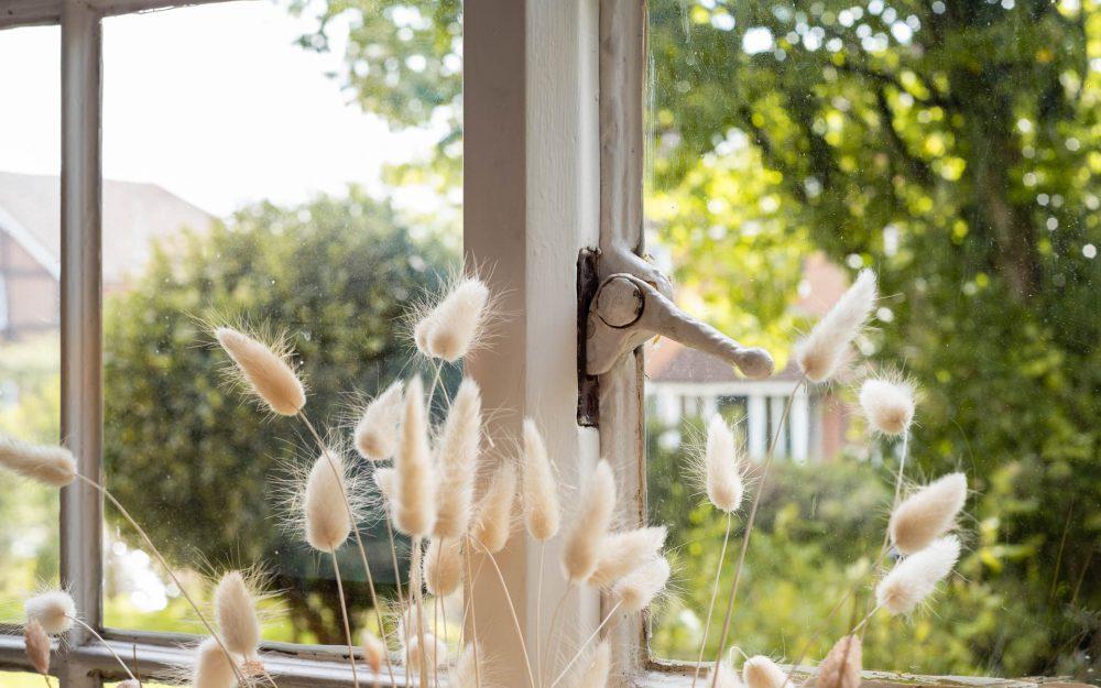 Summer garden view through window